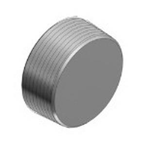 Thomas & Betts PLG9-TB Recessed Plug; 3-1/2 Inch, Threaded, Iron