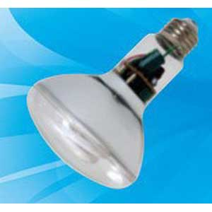 GE Lighting FLE15HBR30SWBX Self-Ballasted R30 Compact Fluorescent Lamp 15 Watt  2700K  Soft White