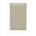 Pass & Seymour SP13-I 1-Gang Standard Size Blank Plate; Thermoset Plastic, Ivory, Box Mount