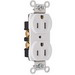 Pass & Seymour CRB5262-W Construction Specification Grade Duplex Receptacle; 125 Volt AC, 2-Pole, 10-14 AWG, Thermoplastic, White