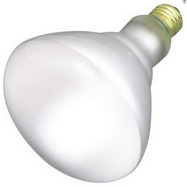 Westinghouse 05102 BR40 Incandescent Flood Light Bulb, 65 Watts 285305634