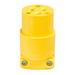 Cooper Wiring 4867ANW-BOX Straight Blade Plug; 15 Amp, 125 Volt AC, 2-Pole, 3-Wire, White