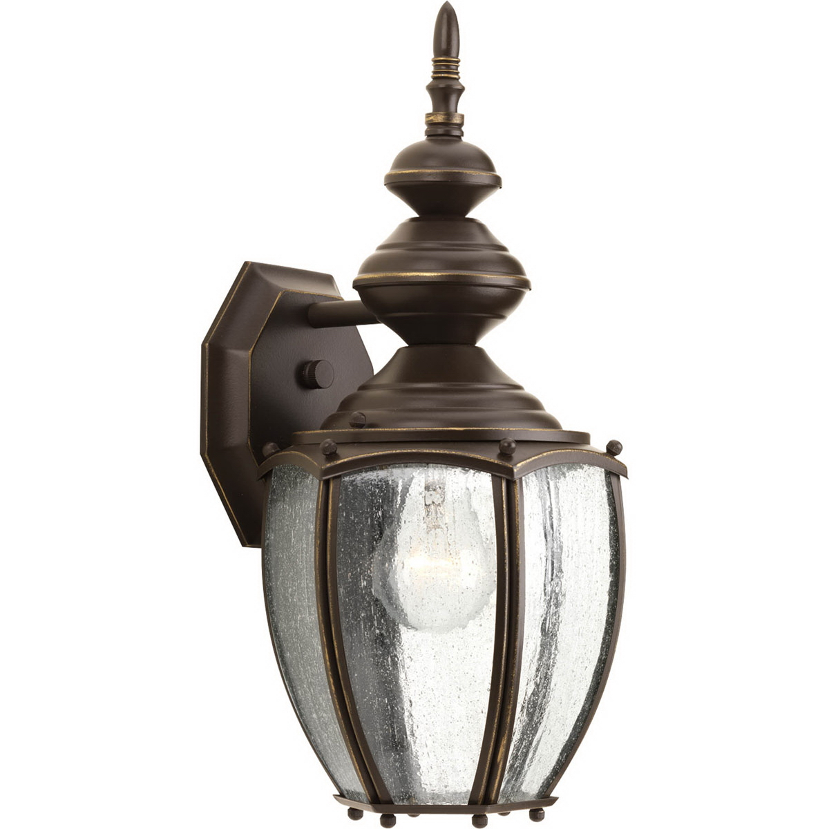Progress Lighting P5765-20 1-Light Roman Coach Series Outdoor Wall Lantern 100 Watt  Black