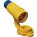 Ericson 1612-CW6P Perma-Tite Grounding Straight Blade Connector; 20 Amp, 125 Volt AC, 2-Pole, 3-Wire, NEMA 5-20R, Blue/Yellow