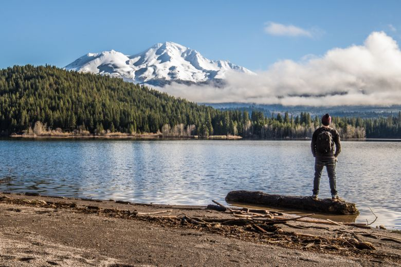 man looking at lake, trees, mount shasta in background