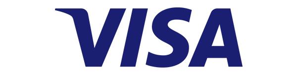 visa标志