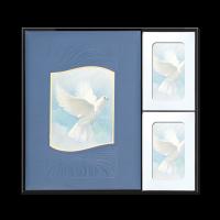 White Wings Oversized