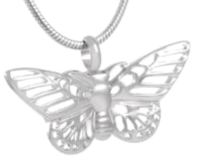 123: Delicate Butterfly