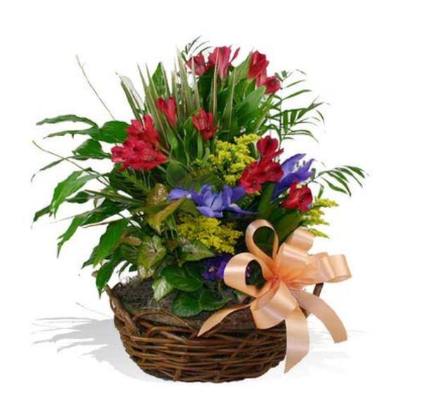 DISH GARDEN WITH FRESH FLOWERS