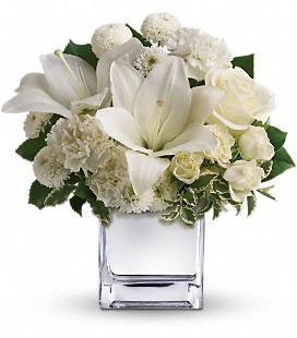 Teleflora's Peace  Joy Bouquet