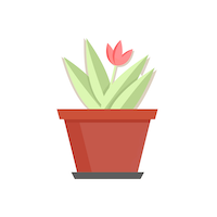 Designer's Choice Plant 1