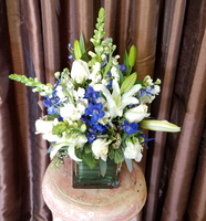 Blue and White Comfort