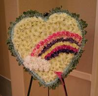 Rainbow of Love Heart