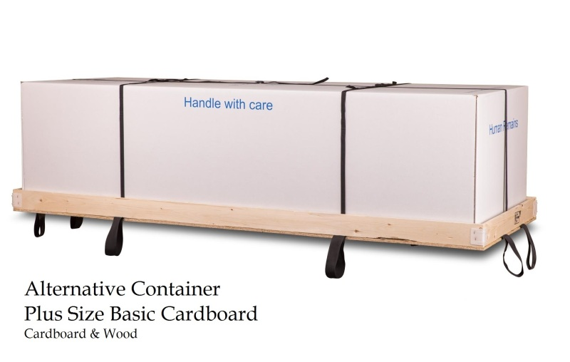 Plus Size Basic Cardboard