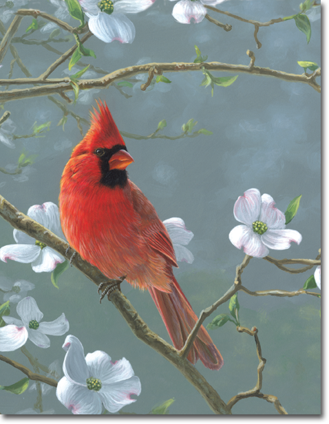 Northern Cardinal Register Book Package