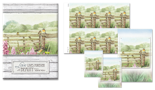 Beyond the  Meadow Register Book Package