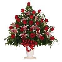 24 rose  Stargazer lily