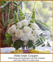Wild Irish Cream