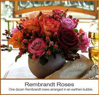 Rembrandt Roses