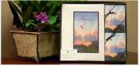Eagle Soaring Collection with Memorial Folders