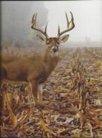 Deer Book 2