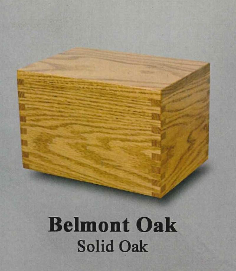 Belmont Oak