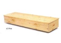 Logan Cremation Pine