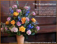 The Acquaintance