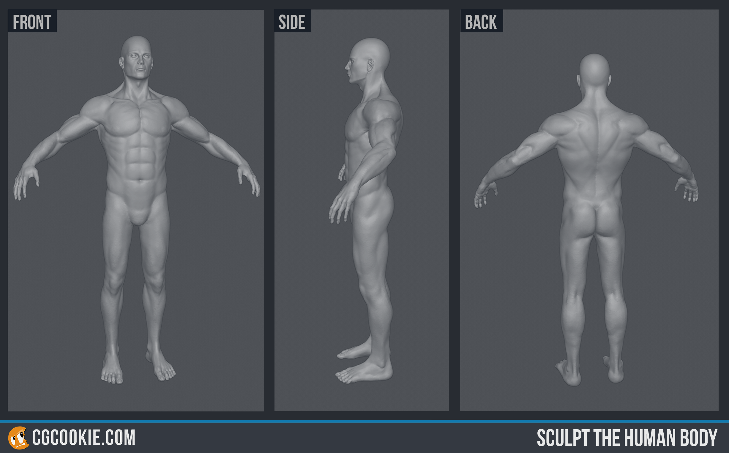 Problem With Adding Screenshots To The Exercise Template Psd