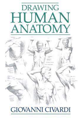 drawing-human-anatomy