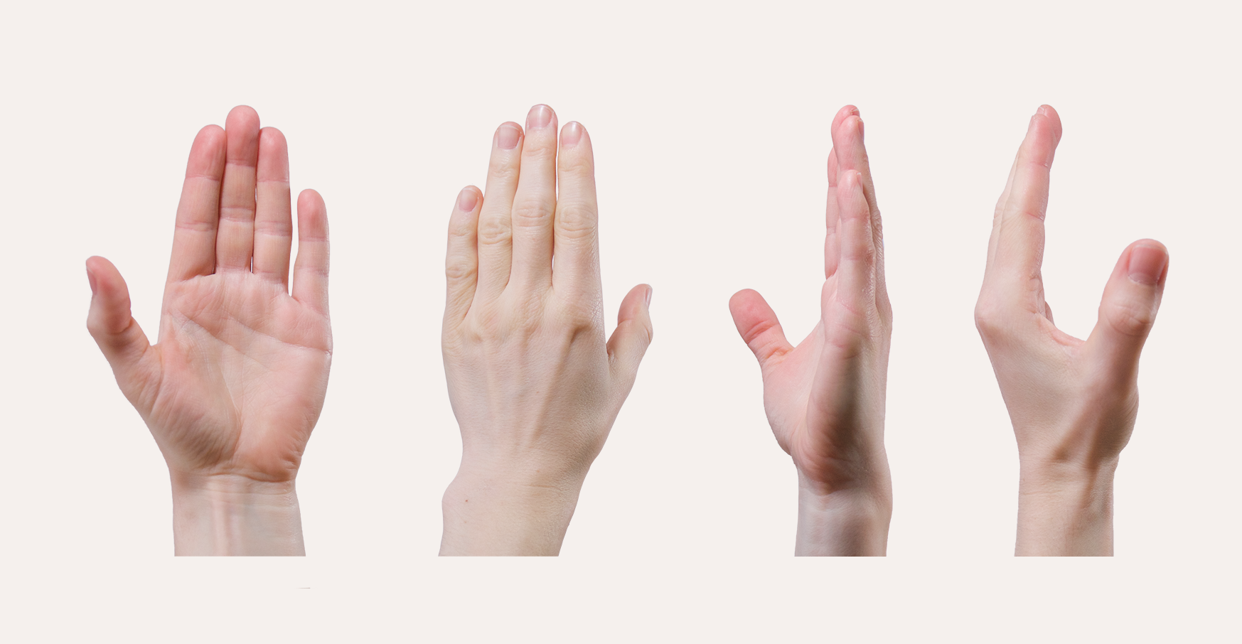 Sculpting the Human Hand - CG Cookie
