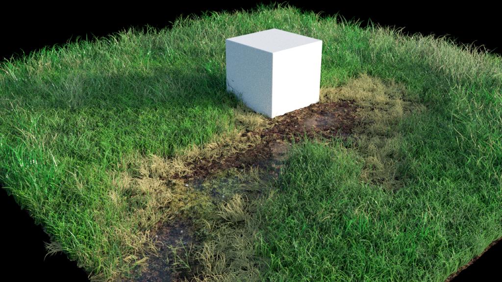 grass_test_02