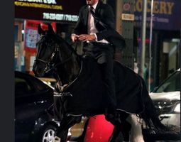 3D Another Keanu Reeves riding horse model