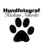Avatar image of Photographer Kickan Nikolic