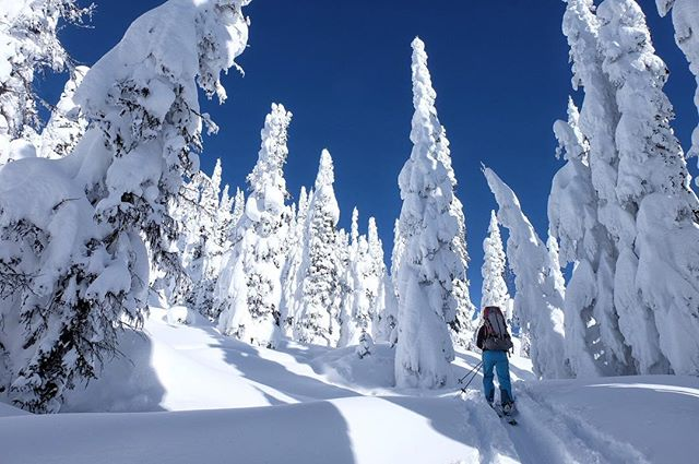 winter wildernessculture whitewaterbc upknorth toptur skitouring skiguide pnwlife pnw outdoorwomen nelsonisawesome nelsonbc mountaingirls kootenays keepitwild jarushastravels humanpoweredadventure huffpostgram greatnorthcollective getoutsideandplay getoutside getoutdoors explorebc capturerad bpmag beautifulbc bc backcountryskiing arcteryxlife arcteryx