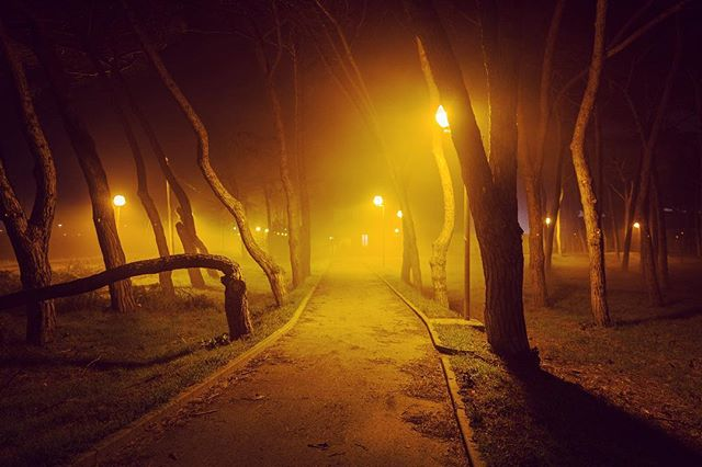 nightscape warmandcold foggy industrial