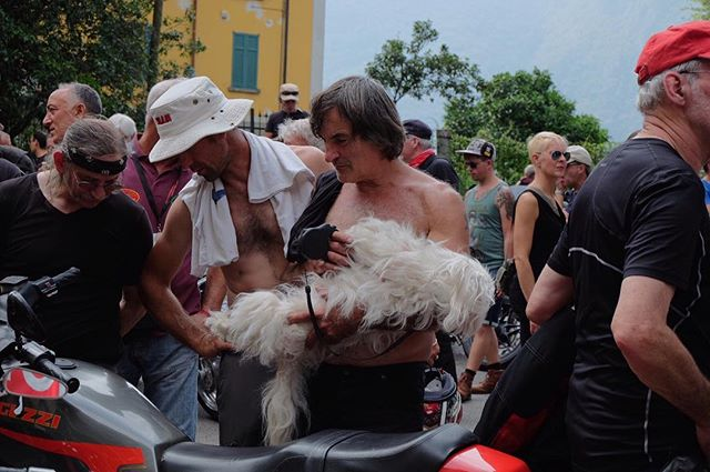 doggy openhouse likeababy bikers motoguzzi rareandunusual