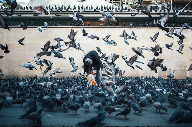 rentalmag streetdreamsmag streekleaks paris life_is_street street_photo streetphotographerinternational canon canon_photos capturestreets 35mm