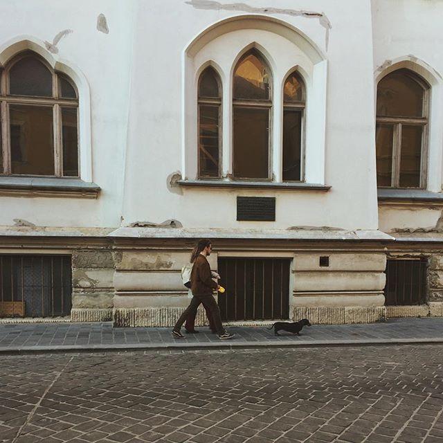 Anastasiia Yalovenko photo 552513