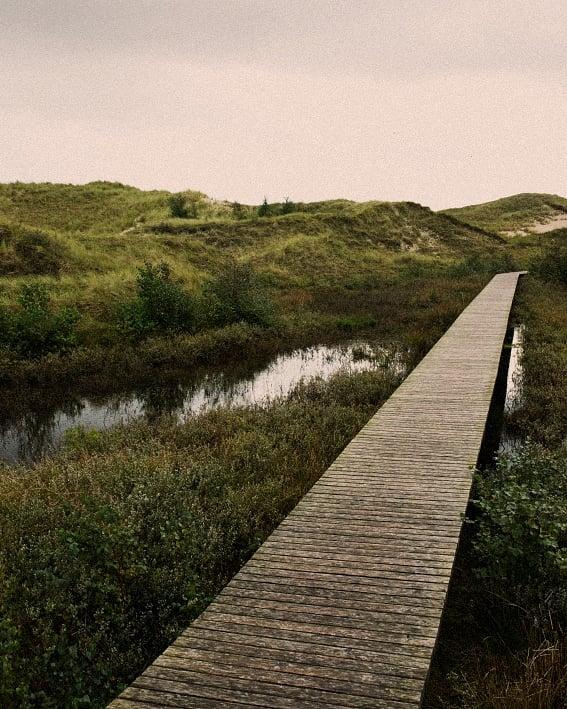 waytowayne waytolove waytohell wayintotheweekend vintage silence picoftheday path nowhere nature landscape island instagood dunes dünen abandoned
