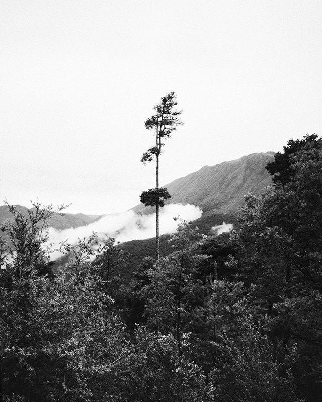 a.abei photo: 0