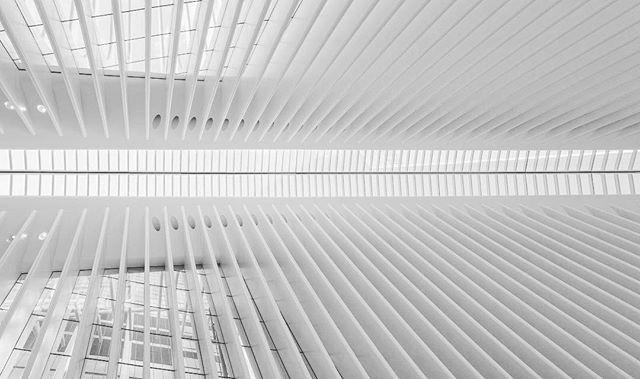 wtc white structure oculus nyc minimalist highkey calatrava architectureporn
