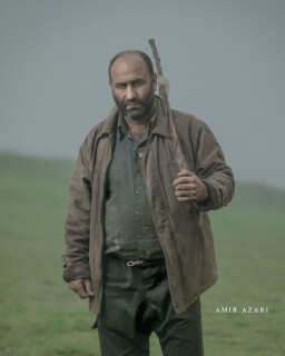 Amir Azari photo 1279722