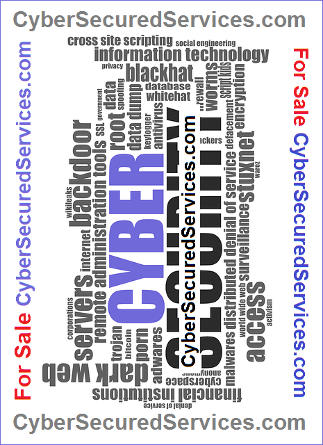 cybersecuredservices.com for sale