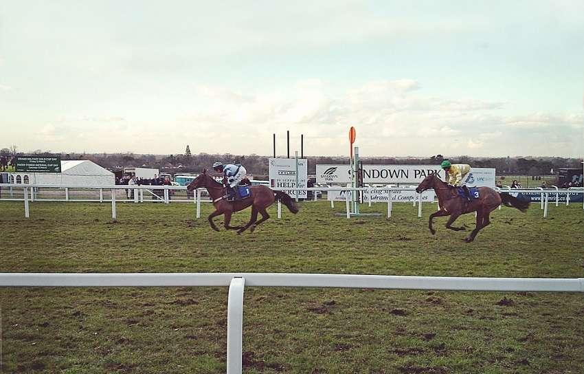 horsereacing
