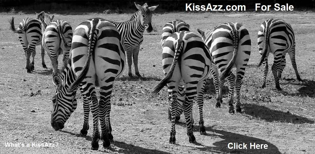 kissazz.com for sale