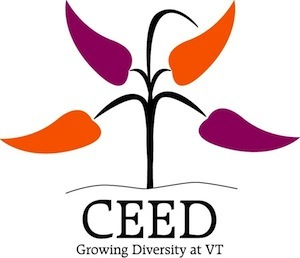 Virginia Tech Center for the Enhancement of Engineering Diversity