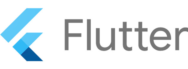 Google Flutter- Warm-up partner