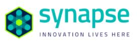 Synapse Florida