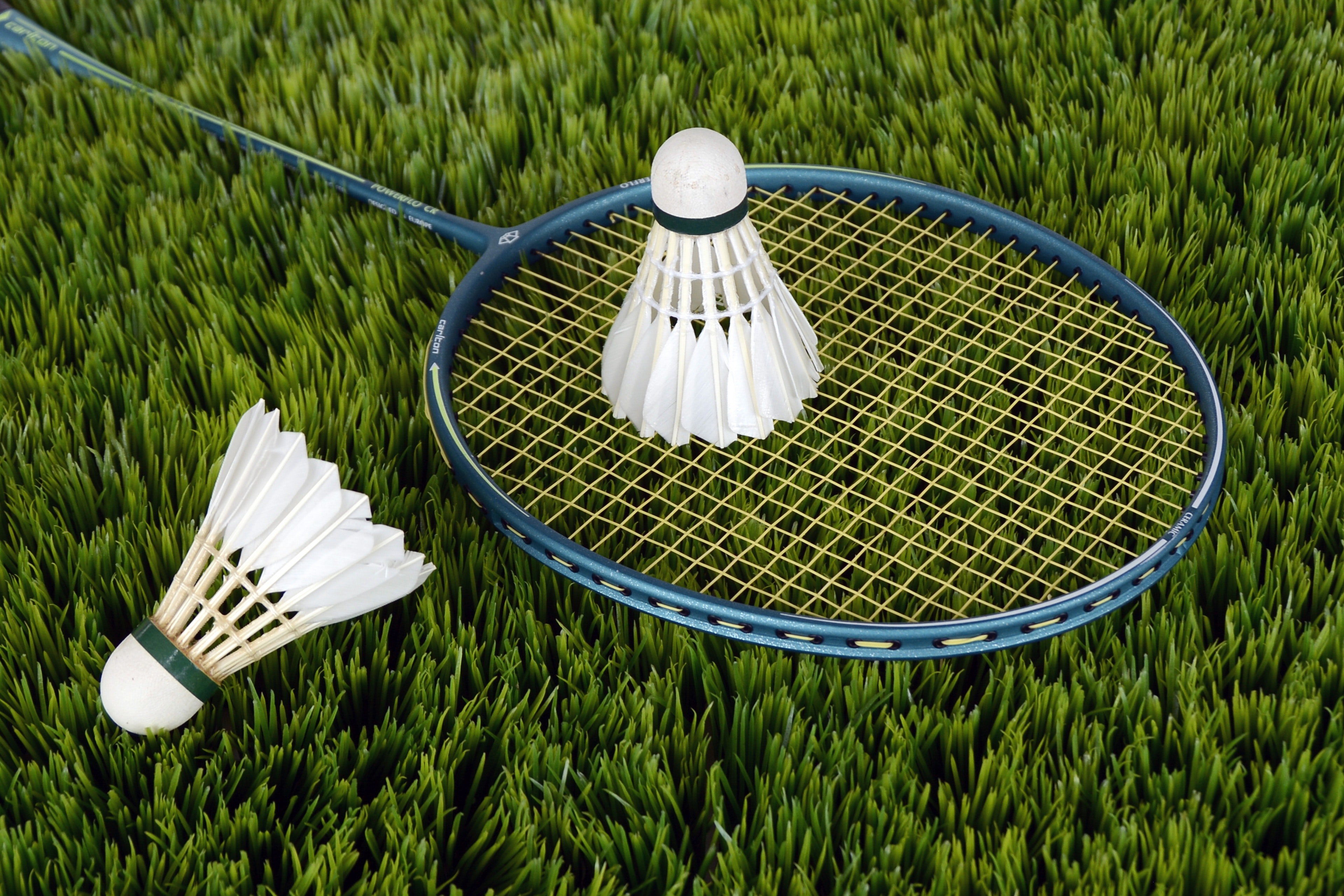 Badminton grass racket 115016